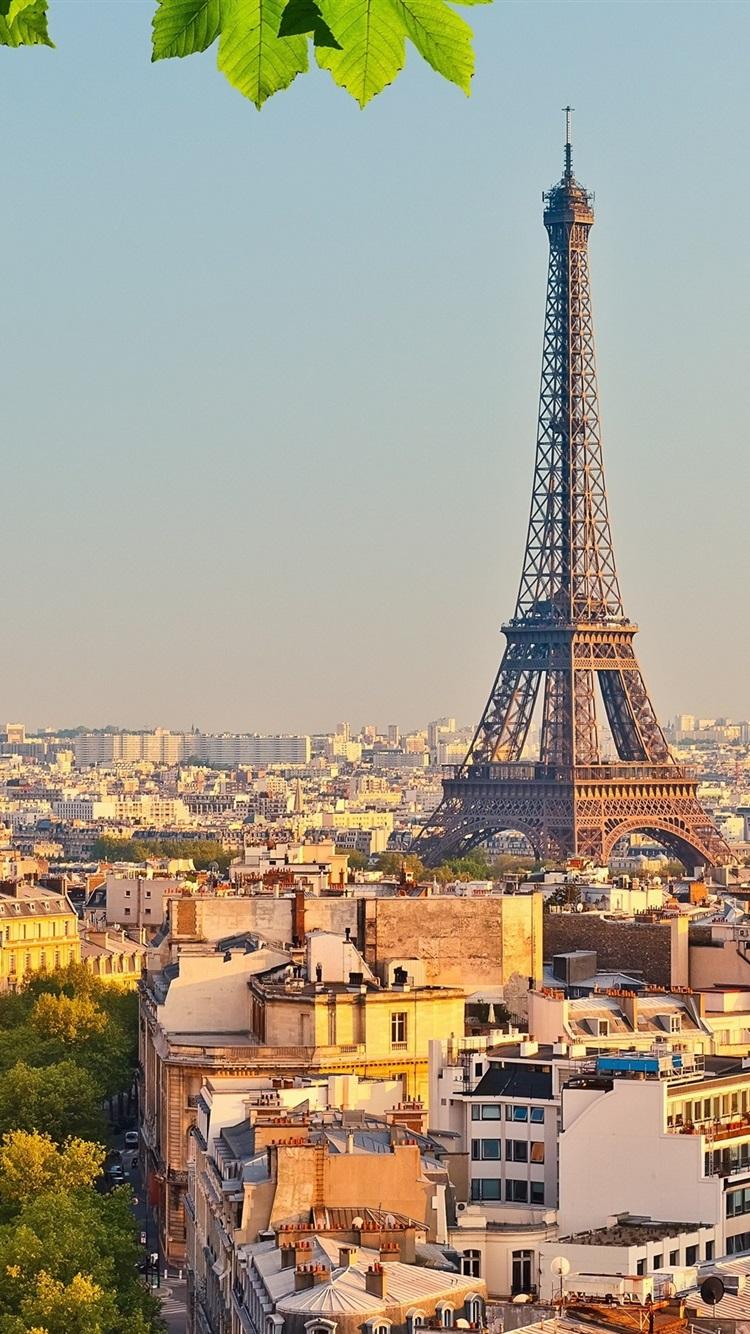 壁紙 エッフェル塔 パリ フランス 都市 木々 緑の葉 x1800 Hd 無料のデスクトップの背景 画像
