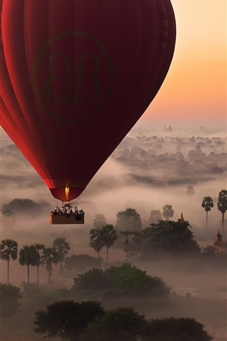 Hot Air Balloon Flight Trees Fog Morning 640x1136 Iphone 5 5s 5c Se Wallpaper Background Picture Image