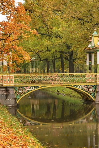 iPhone Wallpaper Pushkin, Saint Petersburg, park, trees, river, bridge, autumn