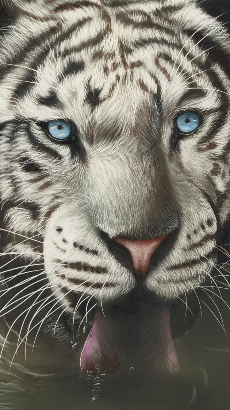 Cara De Tigre Branco Olhos Azuis Lingua 750x1334 Iphone 8 7 6 6s