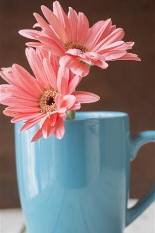 iPhone Wallpaper Blue cup, pink gerbera flowers