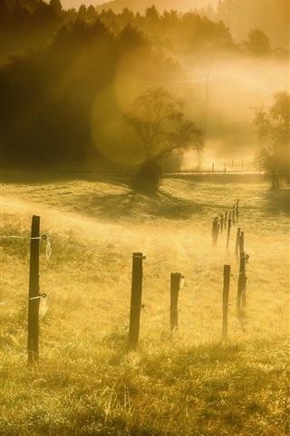 iPhone Wallpaper Grass, fence, fog, morning