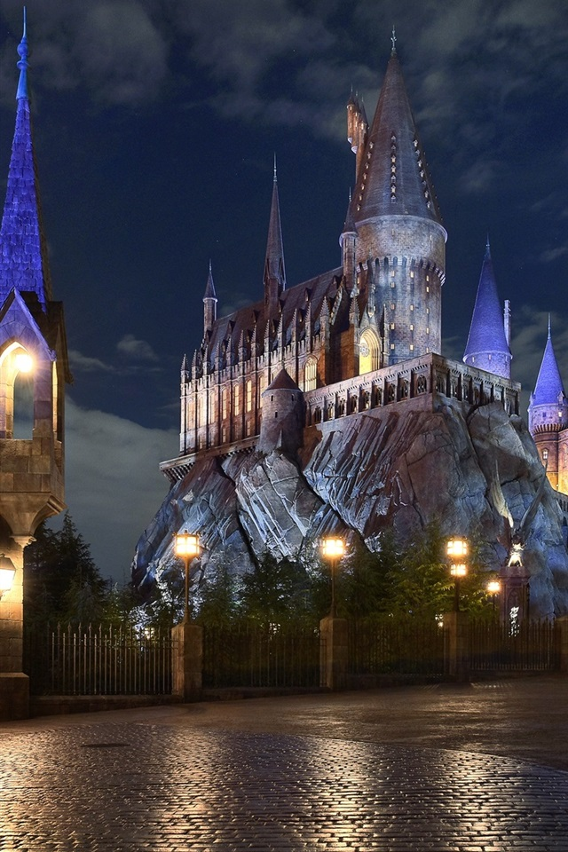 Hogwarts School Castle Night 750x1334 Iphone 8 7 6 6s Wallpaper Background Picture Image