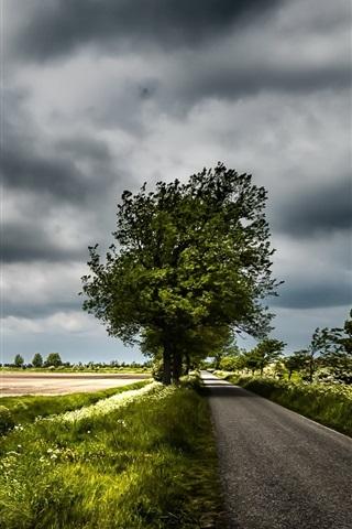 iPhone Wallpaper House, road, trees, wildflowers, clouds, dusk