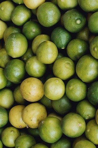 iPhone Wallpaper Many green limes, citrus, fruit