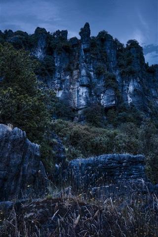 iPhone Wallpaper Piopio, New Zealand, mountains, rocks, night