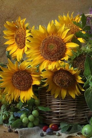 iPhone Wallpaper Sunflowers, basket, plums