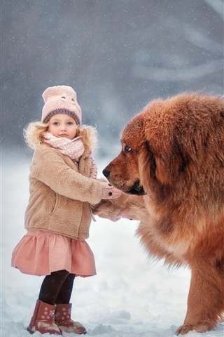 iPhone Wallpaper Tibetan Mastiff, dog, child girl, snow, winter