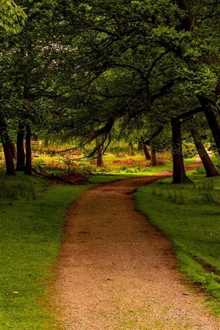 iPhone Wallpaper Trees, path, grass, green, UK, Peak District National Park