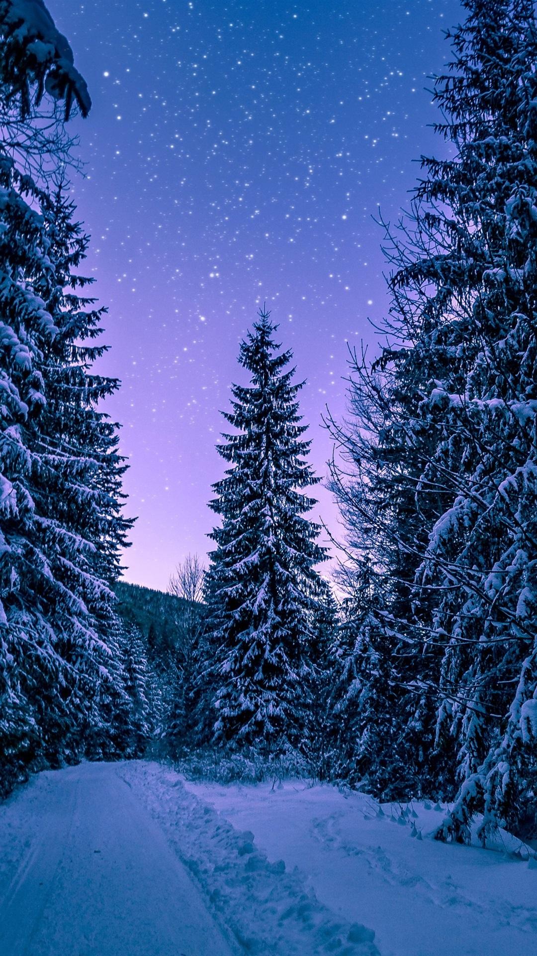 С последним днем зимы смешные картинки картинки тегом