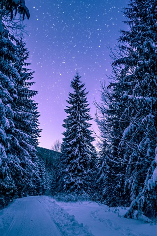 iPhone Wallpaper Winter, forest, trees, snow, starry