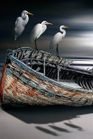 iPhone Wallpaper Birds and boat, sea, creative design
