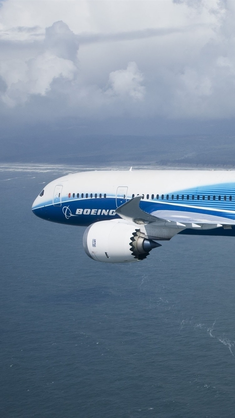 Wallpaper Boeing 787 Plane Flying Sea 2560x1600 Hd Picture