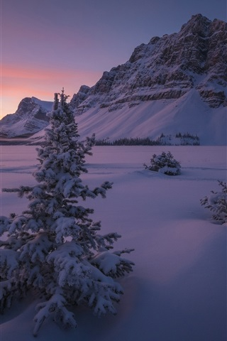 iPhone Wallpaper Canada, Banff National Park, snow, mountains, trees, winter, night