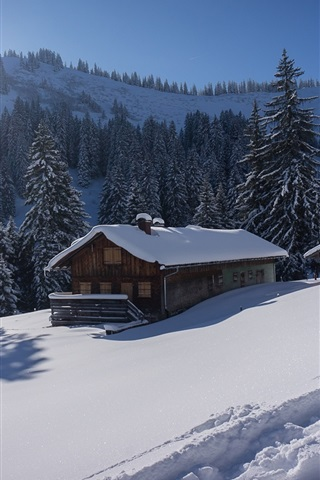 iPhone Wallpaper Germany, Bavaria, Allgau Alps, snow, trees, house