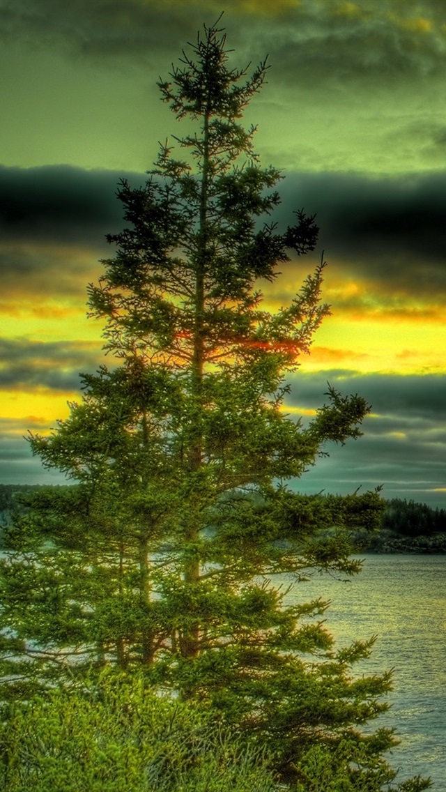 Lake Trees Stones Clouds Sunset Hdr Style 640x1136