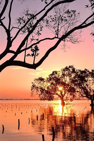 iPhone Wallpaper Philippines, Mindanao, trees, sunset, sea