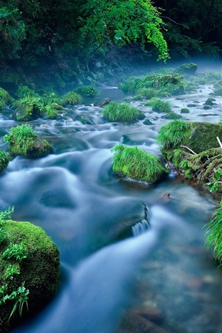 iPhone Wallpaper Stream, stones, green moss