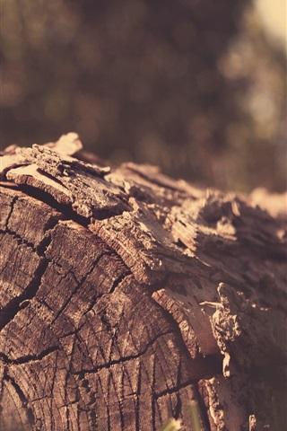 iPhone Wallpaper Stump, grass