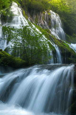 iPhone Wallpaper USA, Panther Creek Falls, beautiful nature landscape, waterfalls, forest