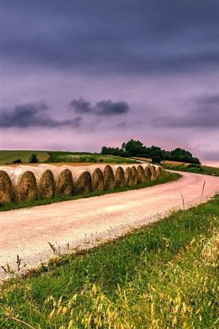 iPhone Wallpaper Wheat fields, road, hay, sky, clouds