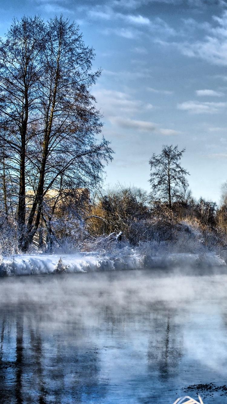 冬 川 木々 雪 寒い 750x1334 Iphone 8 7 6 6s 壁紙 背景 画像