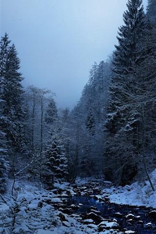 iPhone Wallpaper Winter, snow, trees, creek, dusk