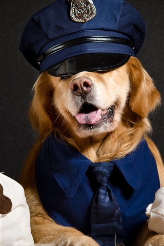 iPhone Wallpaper Cool dog, police, funny animals