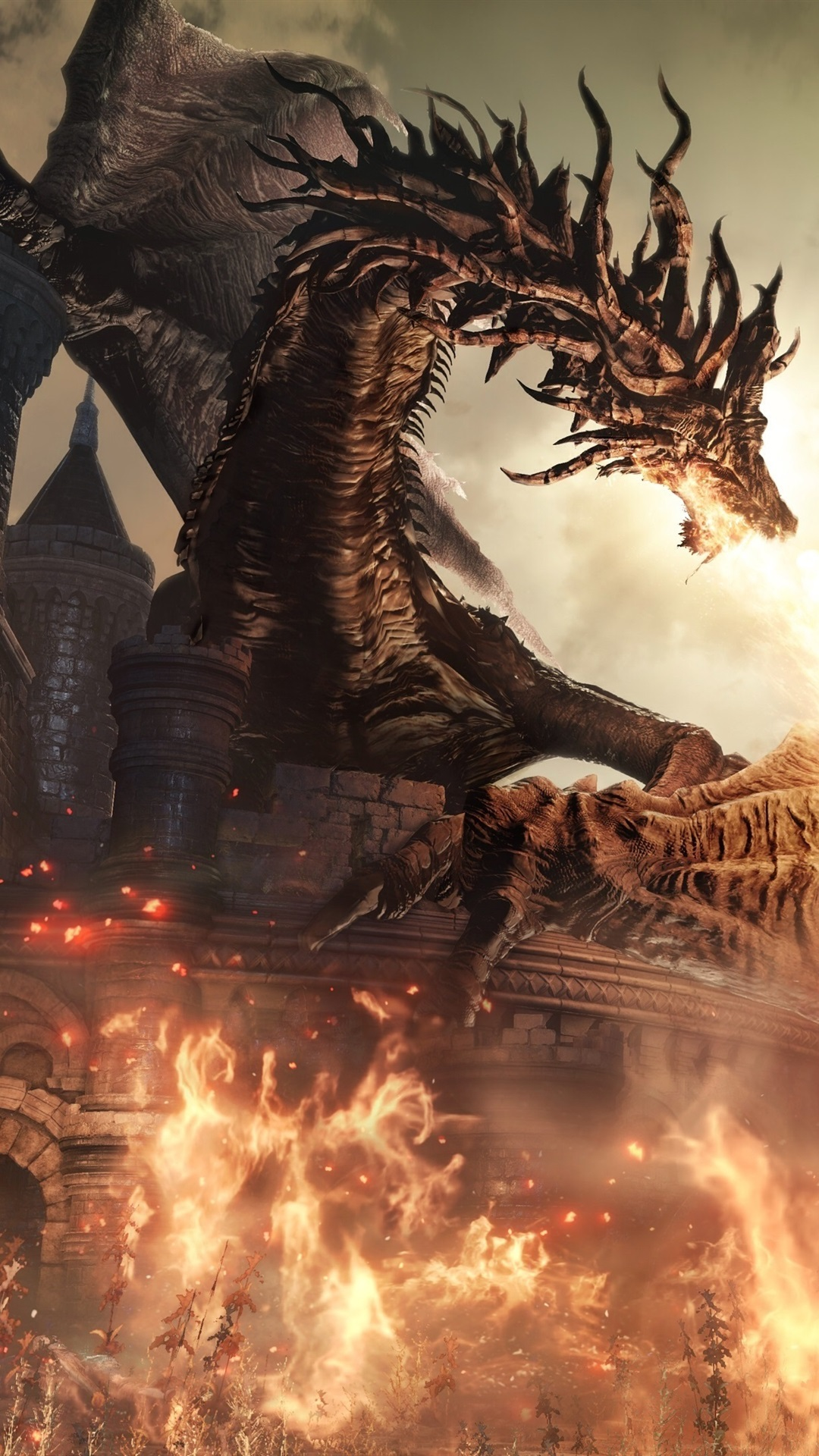 Dark Souls Iii Rpg Game Dragon Fire Warrior 1080x1920
