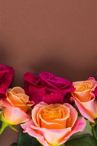 iPhone Wallpaper Red and orange roses, wall background