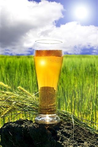 iPhone Wallpaper Summer, beer, cup, wheat field