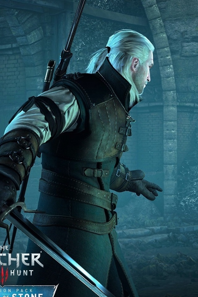 Wallpaper The Witcher 3: Wild Hunt, prince-toad 1920x1080 ...