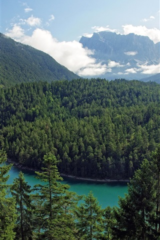 iPhone Wallpaper Tirol, Austria, mountains, trees, forest, river