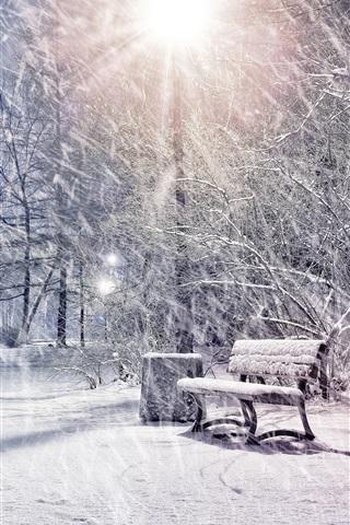 iPhone Wallpaper Winter, snow, park, trees, lights, night