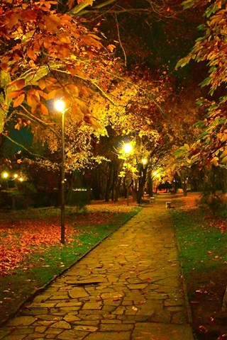 iPhone Wallpaper Autumn, park, trail, night, leaves, lamps