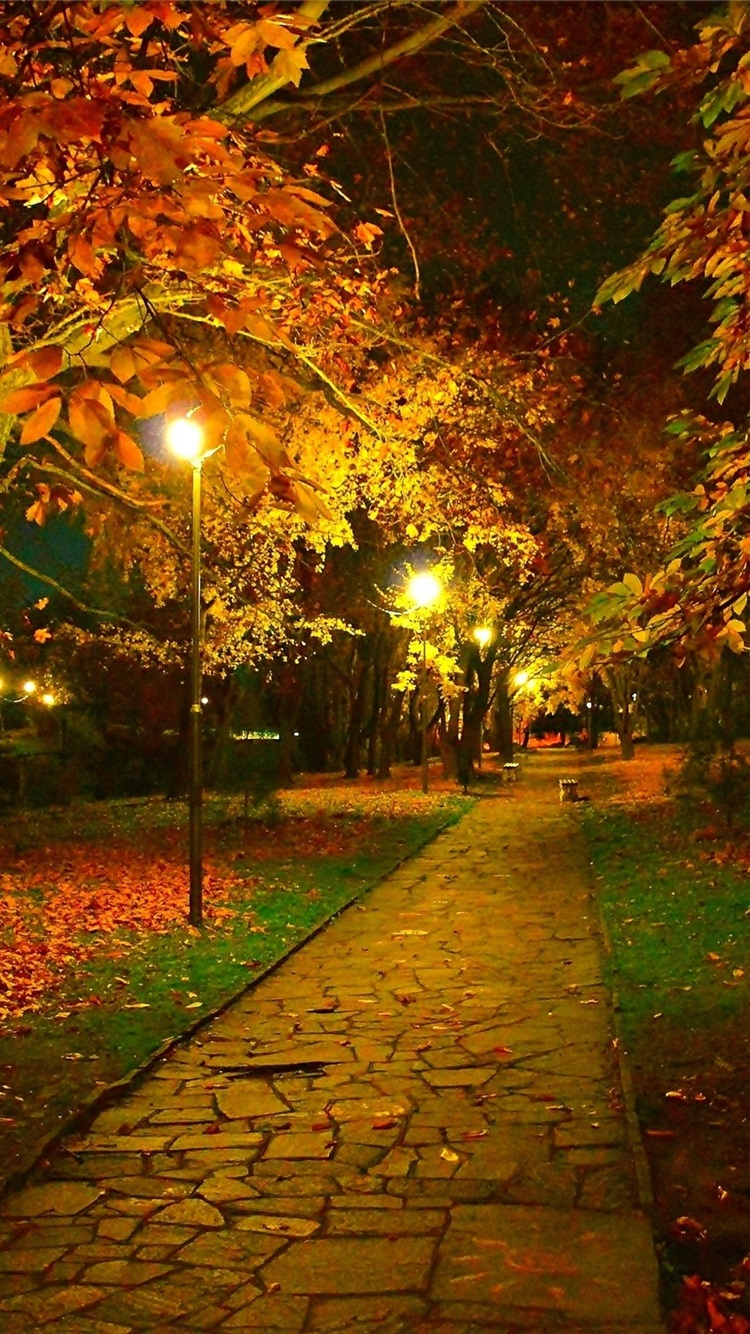 Autumn Park Trail Night Leaves Lamps 750x1334 Iphone 8