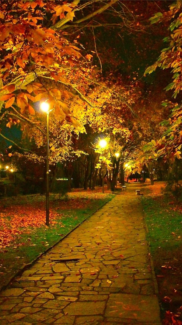 秋 公園 トレイル 夜 葉 ランプ 750x1334 Iphone 8 7 6 6s 壁紙