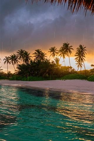 iPhone Wallpaper Beach, palm trees, ocean, sunset