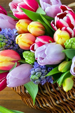 iPhone Wallpaper Colorful flowers, hyacinths, tulips, basket