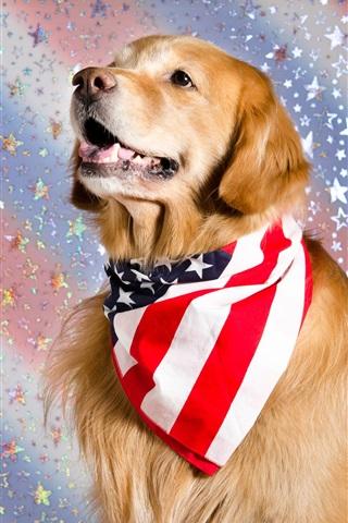iPhone Wallpaper Cute dog, US flag scarf