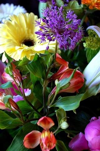 iPhone Wallpaper Flowers, lily, peony, gerbera