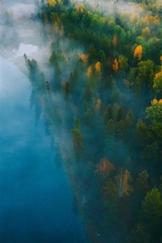 iPhone Обои Лес, река, туман, утро, вид сверху