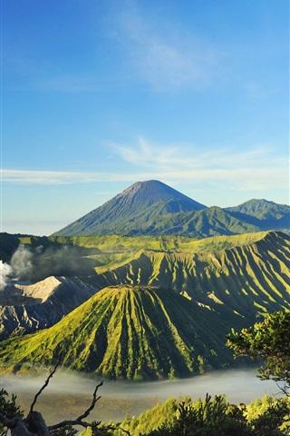 iPhone Wallpaper Indonesia, Mount Bromo, volcanoes, valley, trees, fog