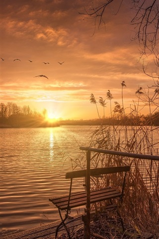 iPhone Wallpaper Lake, sunset, bench, grass, birds