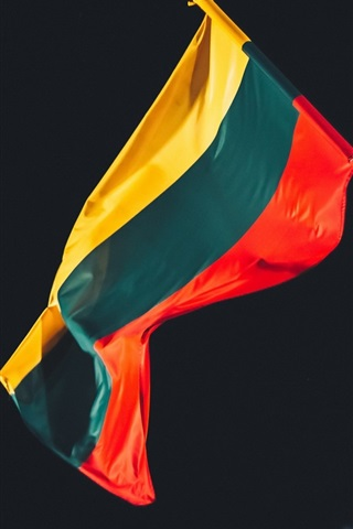 iPhone Wallpaper Lithuania flag, night