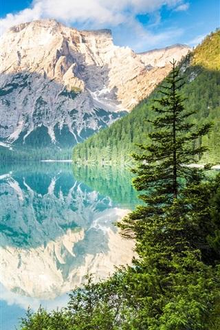 iPhone Wallpaper Mountains, trees, lake, water reflection