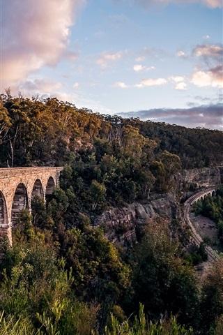iPhone Wallpaper New South Wales, Australia, railroad, trees, sunrise