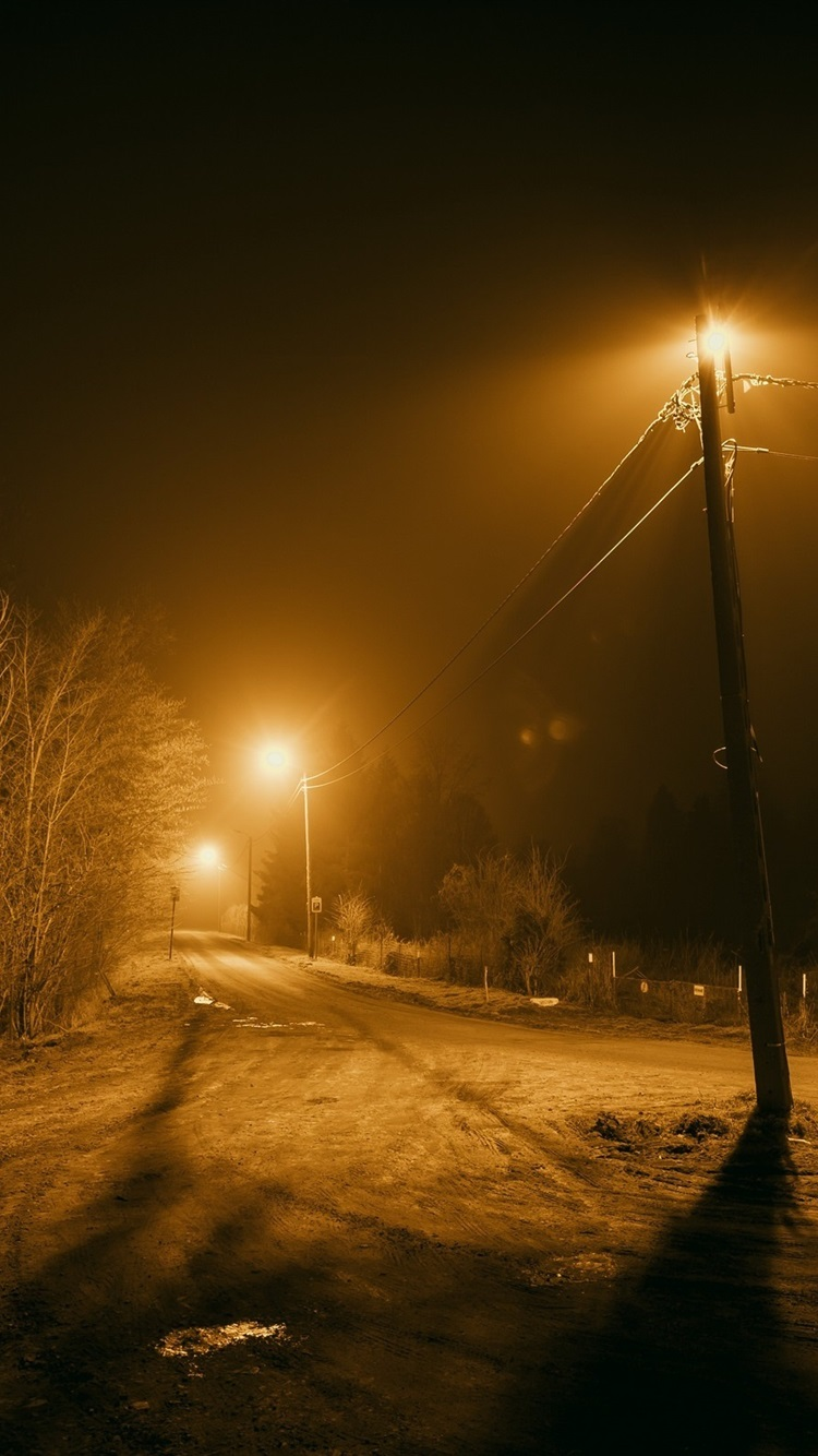 Night Road Trees Lights 750x1334 Iphone 8 7 6 6s Wallpaper Background Picture Image