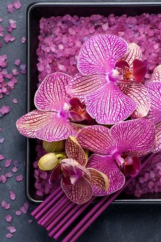 iPhone Wallpaper Purple phalaenopsis, petals, sea salt, SPA theme