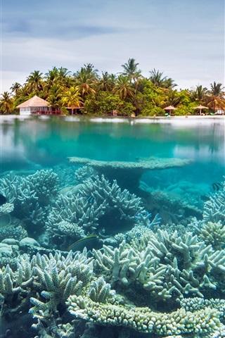 1a2001ae119 Sea, underwater, corals, island, resort 750x1334 iPhone 8/7/6/6S ...